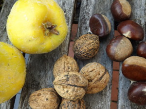 quince, walnuts and chestnuts